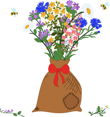 The bag with herbs - chamomile, angustifolium, cornflower, campanula, hypericum and bees on a transparent background