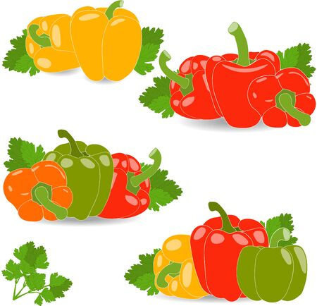 peppers: Peppers, set of yellow, red, green and orange peppers and parsley leaves, vector illustration on a transparent background