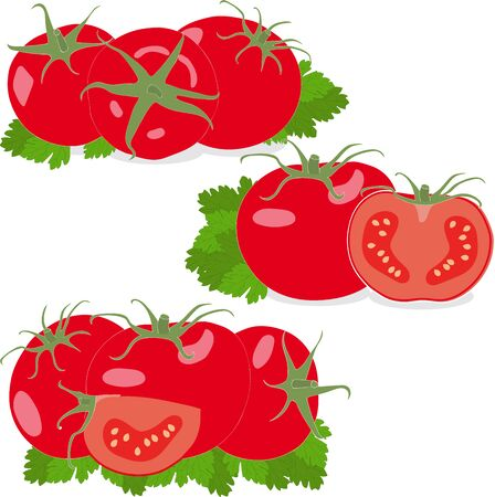 quartered: Tomato. Set tomatoes and parsley leaves. Isolated vegetables on white background Illustration