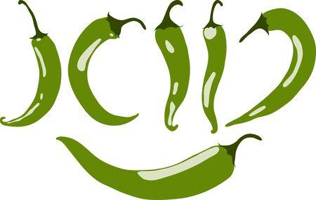 Piment vert, illustration vectorielle, isolé, sur fond blanc Vecteurs