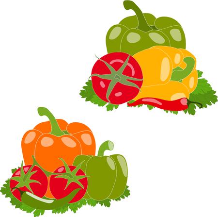 bell tomato: Set of vegetables, vector illustration, isolated, on white background