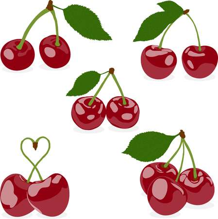 uncooked: a set of cherries, a vector on a transparent background
