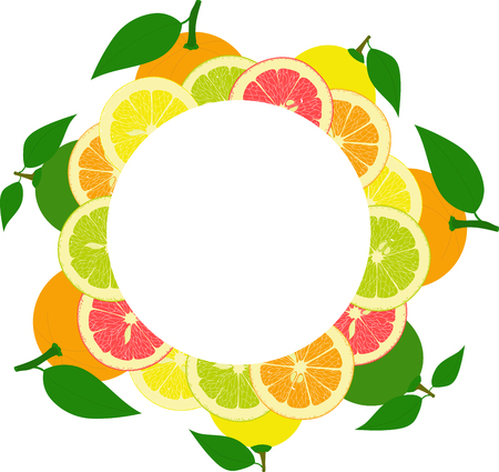 grapefruit: round frame from slices and whole lemons, oranges, lime, grapefruit on a transparent background