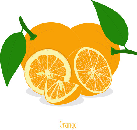orange slices: Orange slices, collection of vector illustrations on a transparent background