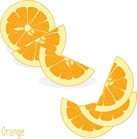 투명한 배경에 오렌지 슬라이스, 벡터 일러스트 레이 션의 집합