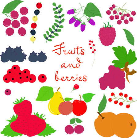 big size: Fruits and berries on a transparent background big size Illustration
