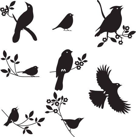 Colección de siluetas del pájaro, siluetas de colores Ilustración de vector