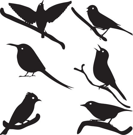 redbreast: Bird Silhouettes, bird on branch, vector collection, isolated