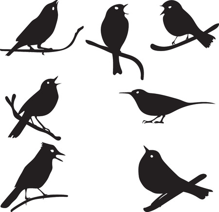 halcyon: Bird Silhouettes, bird on branch, vector collection, isolated