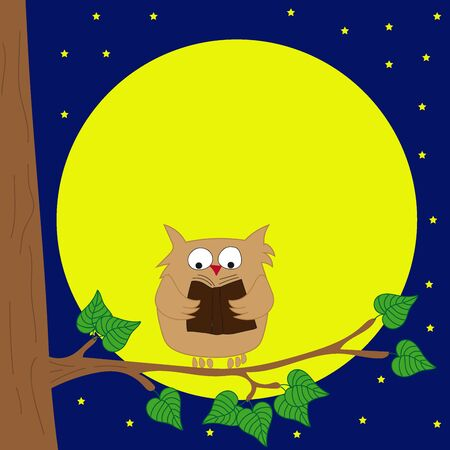 nocturnal animal: Owl sitting on a branch reading a book by moonlight