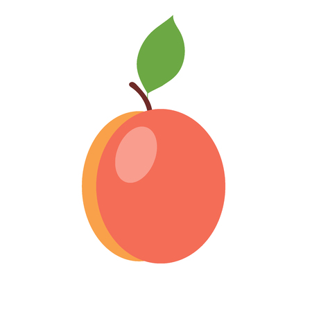 herbivore natural: Peach. Vector illustrations.