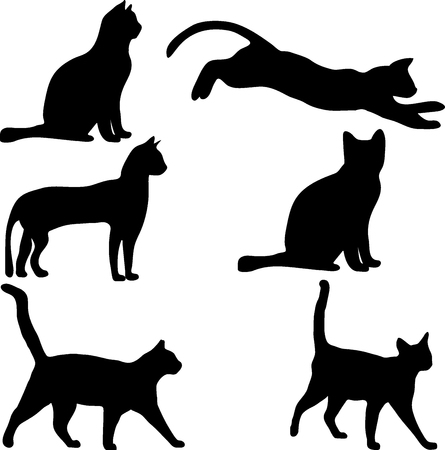 Vector collection of cat silhouettes, vector illustration Vektorové ilustrace