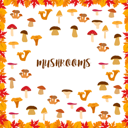 inedible: Mushrooms, autumn pattern, frame made of leaves. illustration