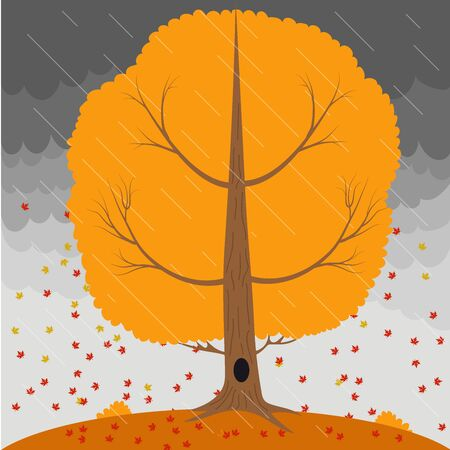 stormy sky: Autumn tree in the rain and falling leaves on the background a stormy sky.
