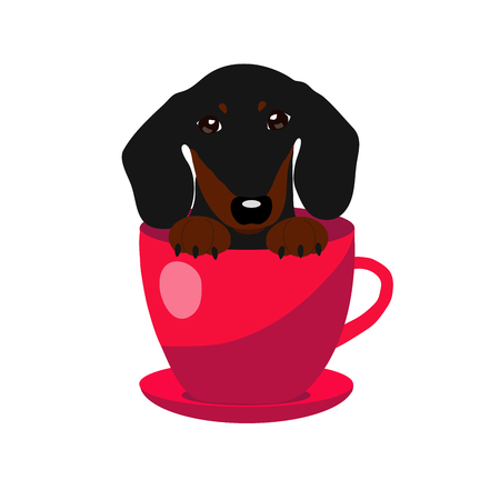 super dog: cute Dachshund dog in red teacup, illustration, set for baby fashion. Illustration