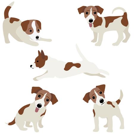 ジャック ・ ラッセル ・ テリア。犬のベクター イラストです。  イラスト・ベクター素材