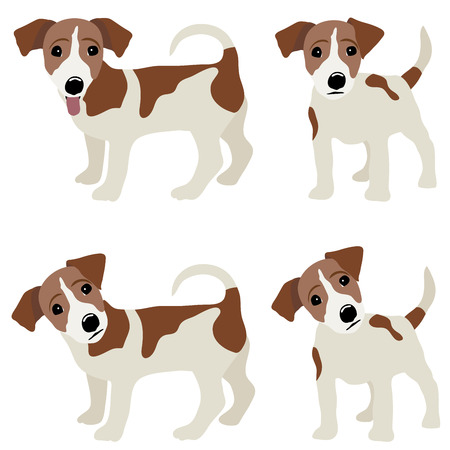 Jack Russell Terrier. Vector Illustratie van een hond. Stock Illustratie