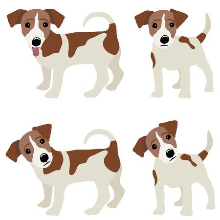 Jack Russell Terrier. Vector Illustration eines Hundes. Vektorgrafik