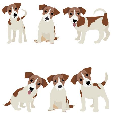 Jack Russell Terrier. Vector Illustration eines Hundes.