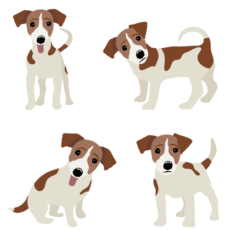 jack: Jack Russell Terrier. Vector Illustration of a dog.