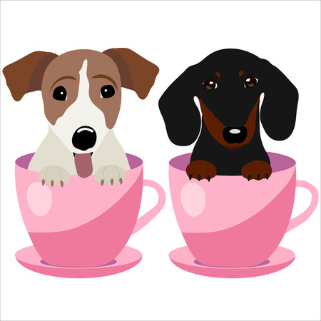 Jack Russell Terrier and Dachshund dog in pink teacup, illustration, set for baby fashion.