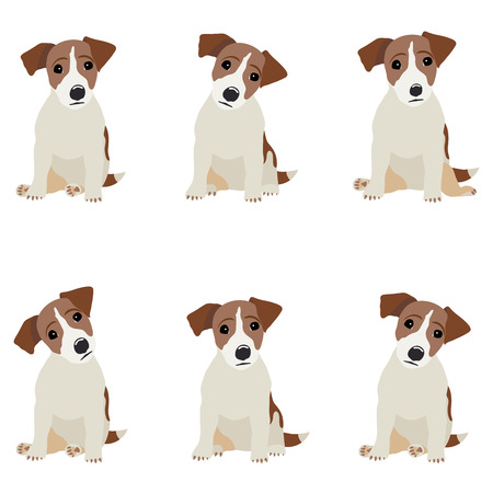 Jack Russell Terrier. Ilustración del vector de un perro.