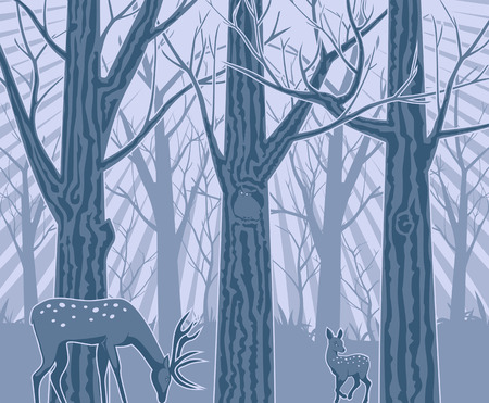 Night in the Deep Forest Vector Illustration