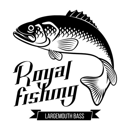 Largemouth Bass. Fish vector illustration. Royal fishing calligraphy