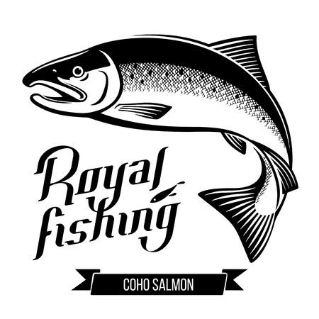 Coho Salmon fish vector illustration  イラスト・ベクター素材
