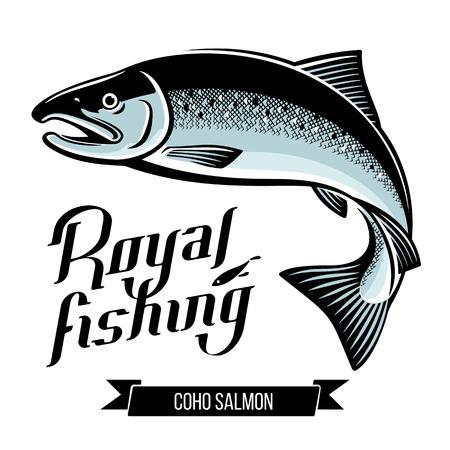 Coho Salmon fish vector illustration Illustration