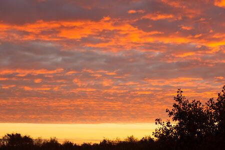 upraise: Heavenly landscape with beautiful cumulus clouds.