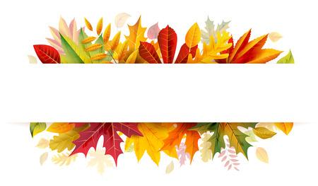 bunner: Autumn bunner
