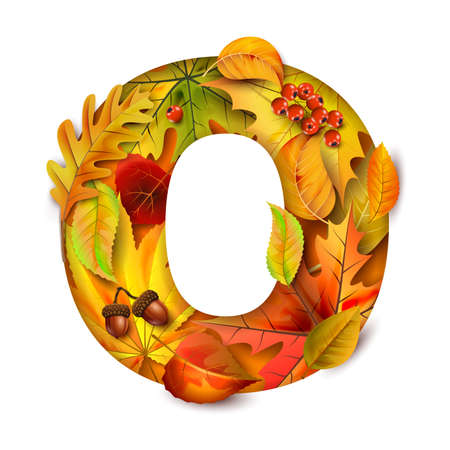 Autumn stylized alphabet with foliage. Letter O.
