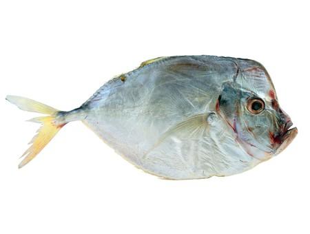 moon fish: Dried fish
