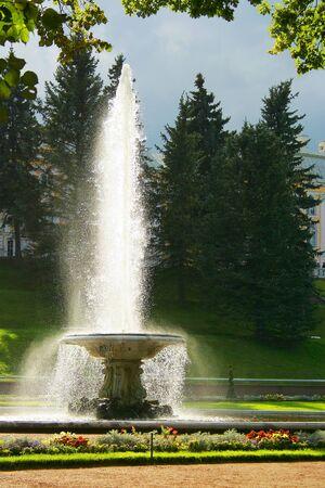 peterhof: Peterhof, fountain Bowl in the Lower Park Stock Photo