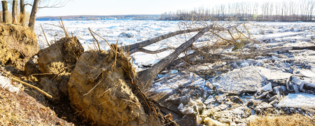 white washed: The ice jam and fallen tree in Balakhonovskoe the channel of the river Tom near the town of Kemerovo Stock Photo