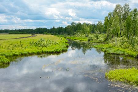 Ekitag river flows from an extensive Shestakovsky wetlands, Kemerovo region