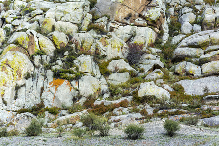 Unusual texture of the rock, mountains of Altai Republic