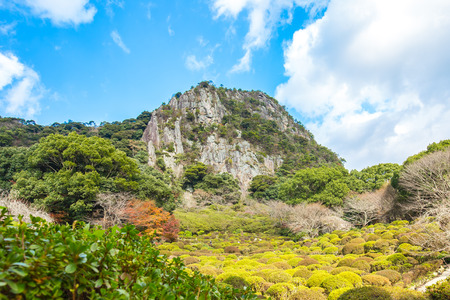 Jardins Mifuneyama à Takeo, Saga, Japon.