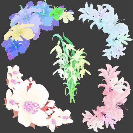 naturally: Set lily flowers jasmine, hibiscus, snowdrop. vector illustration Illustration