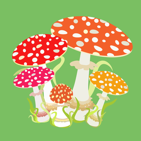 a fly agaric: group with fly agaric, Amanita muscaria vector illustration