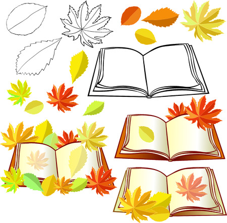 alder: set of autumn with leaves and educational books vector illustration