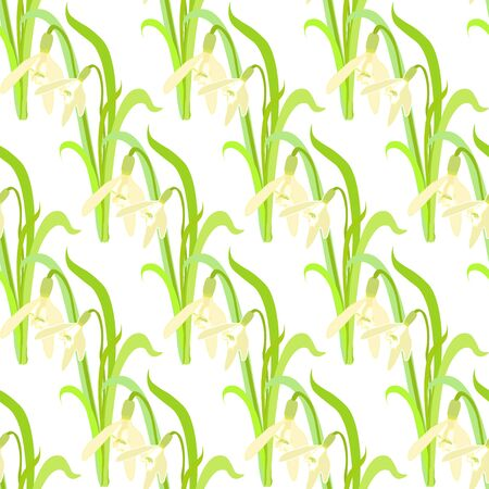 gently: seamless pattern with a snowdrops vector illustration Illustration