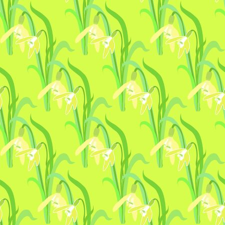 seamless pattern with snowdrops sunny vector illustration Illustration