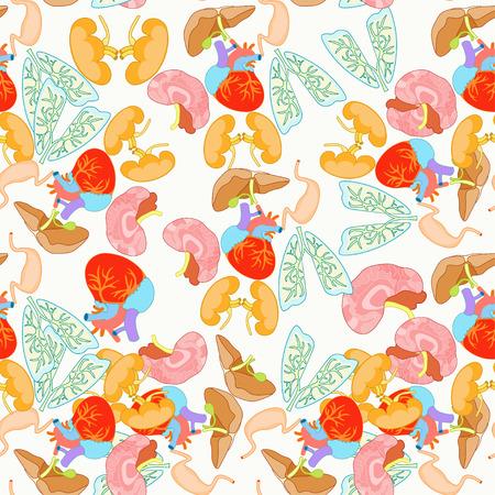 gallbladder surgery: seamless pattern of human organs inside the body vector illustration Illustration