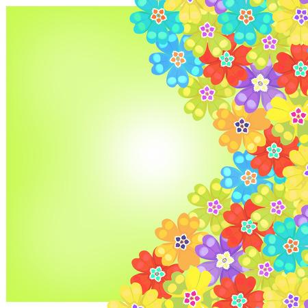 primula: card of spring primroses primula flowers green vector illustration