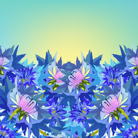 postcard cornflower of wild flowers at dawn vector illustration