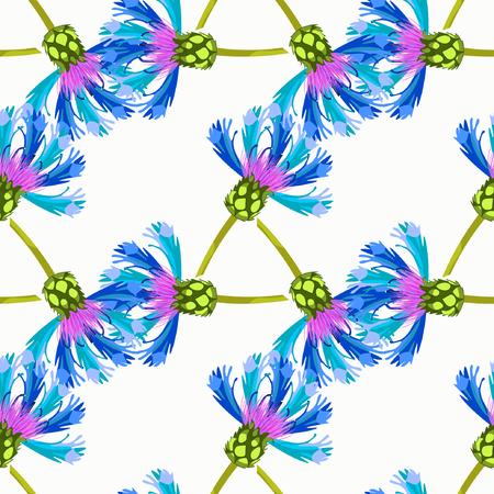 field of flowers: seamless pattern field flowers knapweed overblown vector illustration
