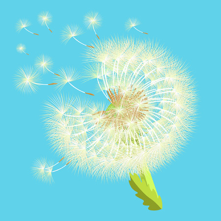 posterity: background dandelion in the wind fly vector illustration Illustration