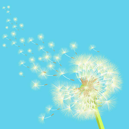 posterity: dandelion flying in the wind vector illustration